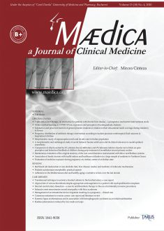 MÆDICA - a Journal of Clinical Medicine | Vol. 15, No. 4, 2020
